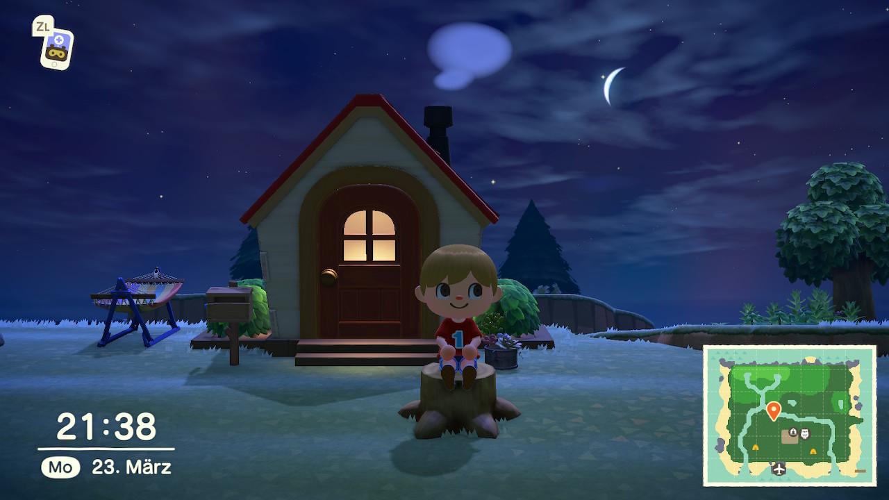 Animal Crossing Haus